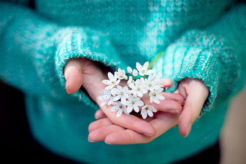 the beauty of gentleness